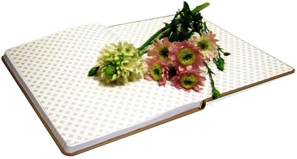 diary-